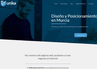 Unika Diseño y Posicionamiento Web