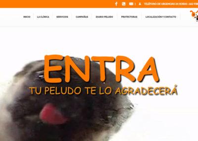 Veterinario Murcia Norte